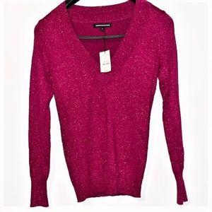 EXPRESS Design Studio V-Neck Sweater - NWT